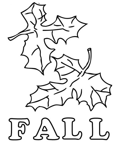 fall leaves coloring page printable fall leaves coloring pages bestofcoloring com