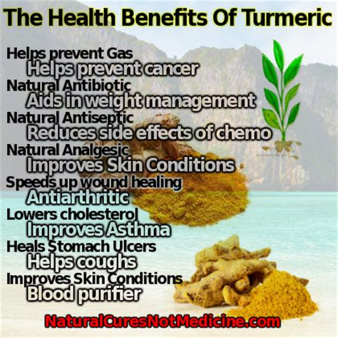 Turmeric Medicinal Uses by Tumeric Health Benifits How To Read Blood Pressure Readings