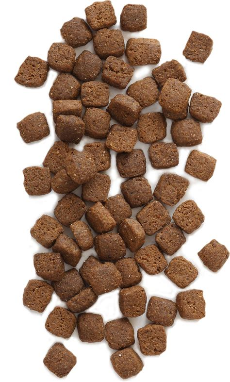 holistic puppy food earthborn holistic primitive grain free food 28 lb bag