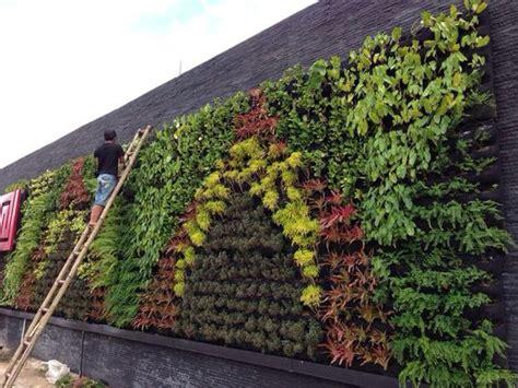 vertical garden indonesia 28 images cara menanam pada