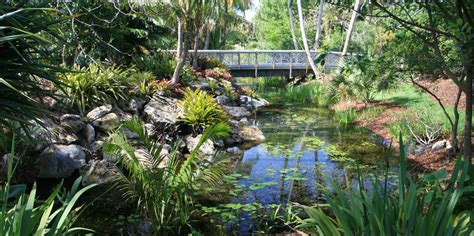 Mount Botanical Gardens Mounts Botanical Garden Of Palm County American