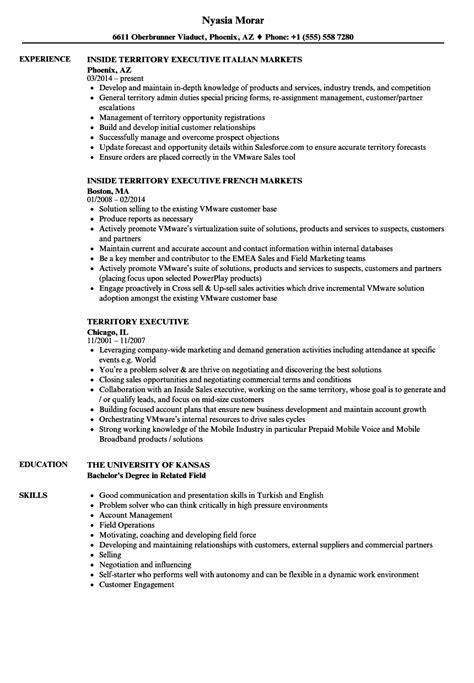 sales executive resume sle printable rental agreement