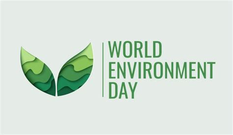 when is day celebrated in the world when and why is world environment day celebrated