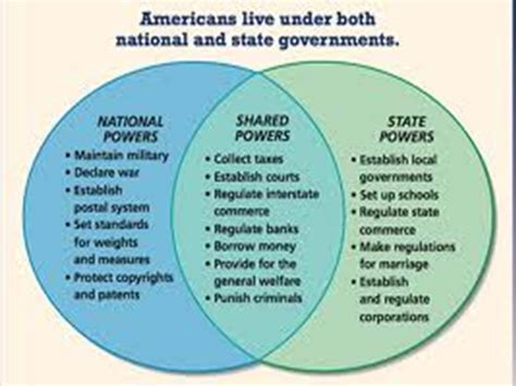 powers of state and federal government venn diagram image gallery state powers