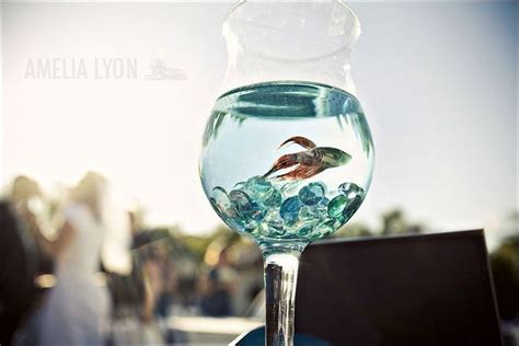 Link Score With This Bowl Centerpiece by Best 25 Fish Wedding Centerpieces Ideas On