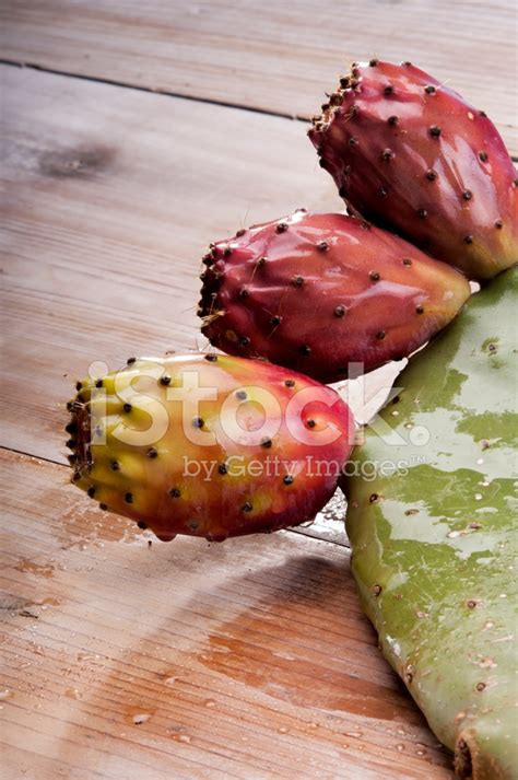 image prickly pear cactus fruit download ripe prickly pear or paddle cactus and red stock photos