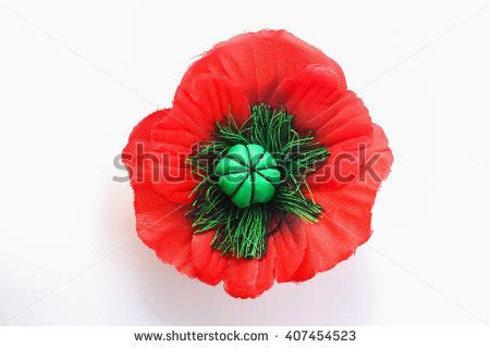 top 28 when did poppies become symbol of remembrance