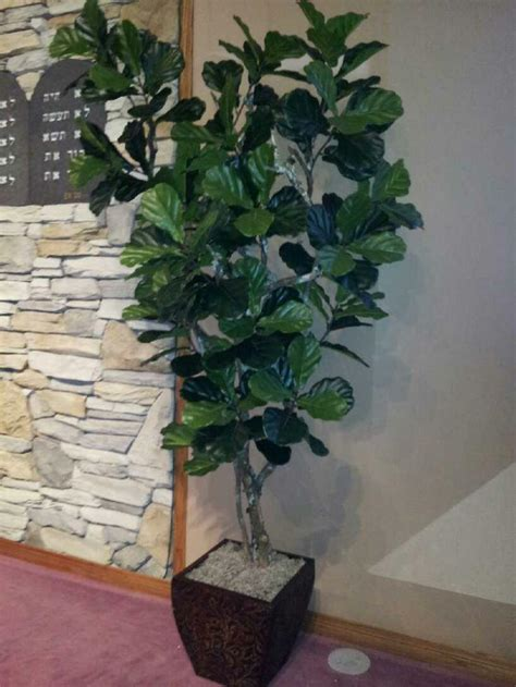 fake tree home decor artificial trees and artificial plants from artificial