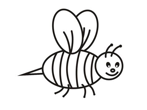 bee color bee coloring pages
