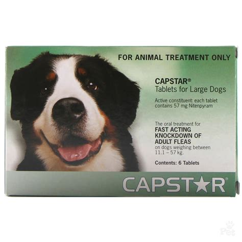 capstar for dogs capstar flea treatment large 11kg