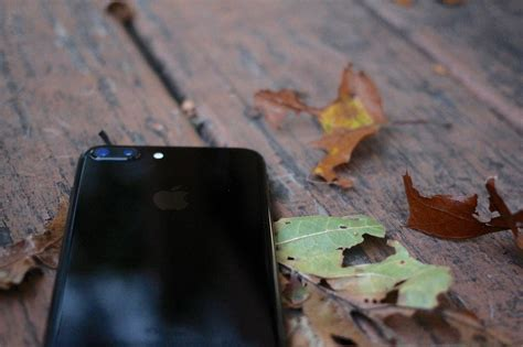 phone photography how to use the iphone 7 plus camera the ultimate guide