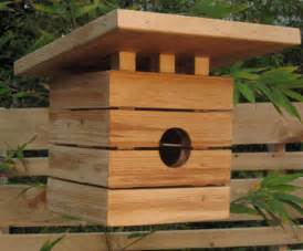 cool bird house plans house design photo cool bird house design images