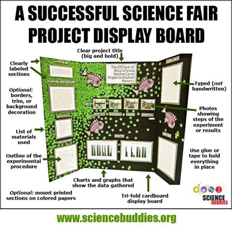 The 25 Best Science Fair Board Ideas On Pinterest Science Fair Project Poster