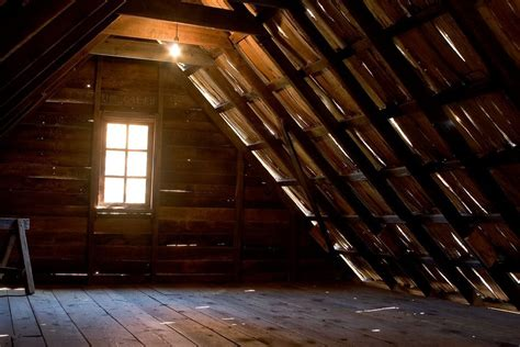 is there mold growing in your attic official website of