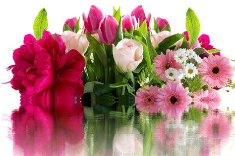 fiori animati gratis fiori compleanno animati fn34 187 regardsdefemmes