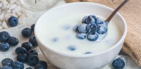 weight management facts new yogurt weight management facts yogurt in nutrition