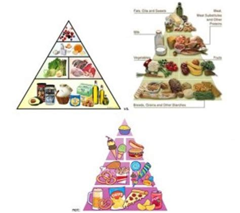 whole grain junk food paleo vs carbs per se op 68 the poor misunderstood