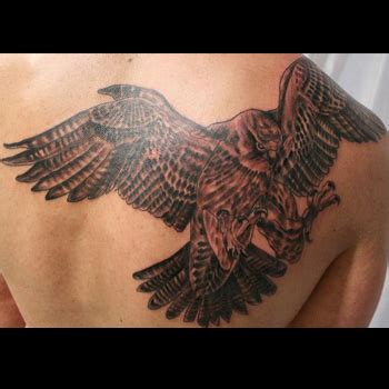 falcon tattoo meaning falcon elaxsir