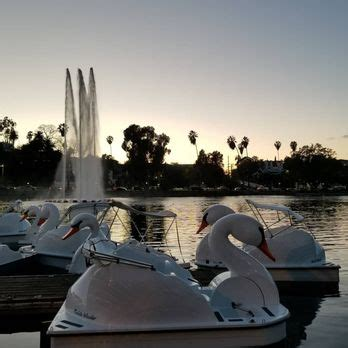 swan boats in echo park echo park lake 1654 photos 376 reviews parks 751