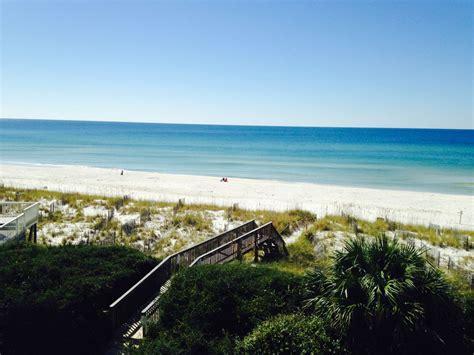 friendly beaches florida florida gulf coast beaches pet friendly
