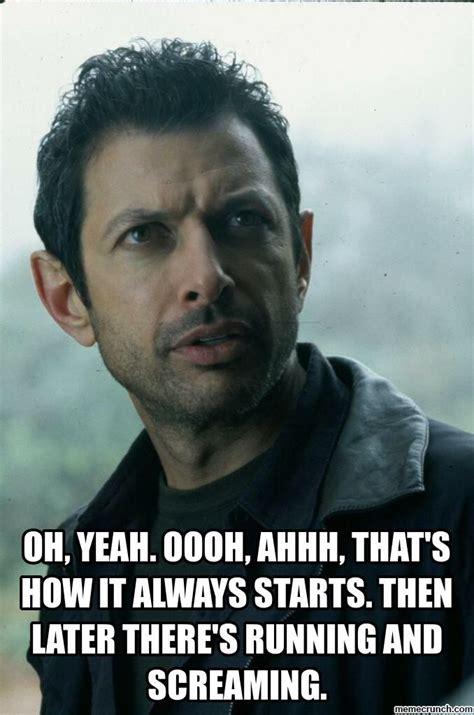 Jeff Goldblum Meme - 31 best images about jeff goldblum on pinterest