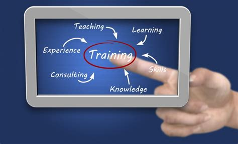 and trainer professional education aaaai