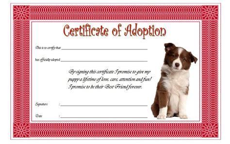 pet adoption certificate editable templates