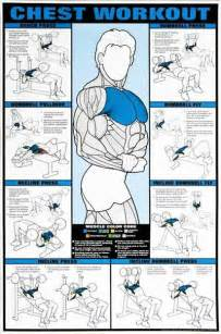at home chest exercises 25 best ideas about chest workout for on