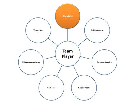 Team Player by 7 Characteristics Of A Team Player