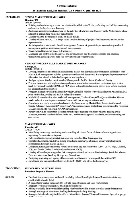 Risk Manager Resume Templates by Enterprise Risk Management Resume Achievements Microsoft