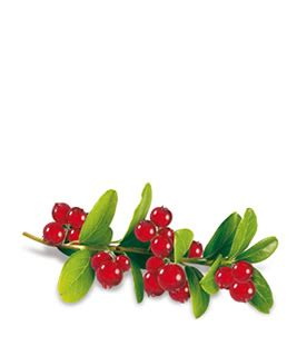 Biotta Mountain Cranberry Juice 500 Ml 1 biotta mountain cranberry