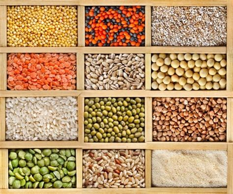 alimenti ricchi di proteine nobili cibi ricchi di proteine vegetali ecco quali sono non