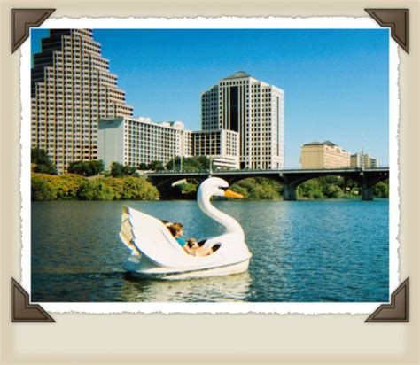 swan boats texas austin texas lady bird lake and the bats hubpages