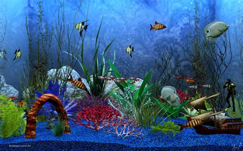 wallpaper aquarium mac aquarium backgrounds for computer 1280x800 aquarium