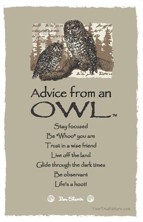 owl symbolism pure spirit advice from an owl by ilan shamir spirit animals