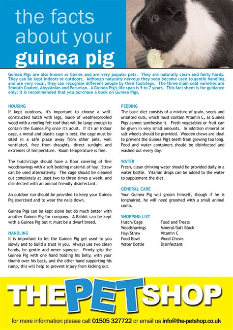 pet information pet information sheet printable grosir baju surabaya