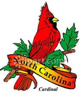 state bird of north carolina 17 best images about cardinal bird cakes on pinterest