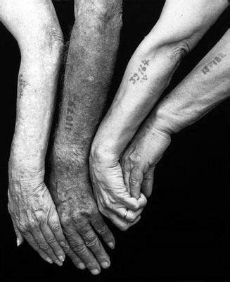 nazi tattoo numbers 114 best images about holocaust tattoos on pinterest 83
