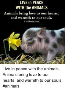 eat in peace to live in peace your handbook for vitality books live in peace with the animals animals bring to our