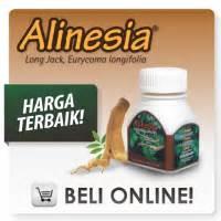 Obat Herbal Tongkat Ali jual sarang semut papua obat kapsul sarang semut papua