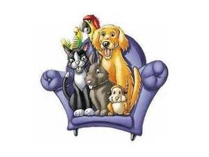 in home pet sitting 301 moved permanently