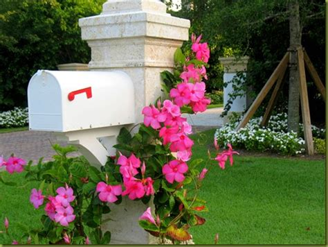 mailbox ideas for landscaping ideas for landscaping mailbox area