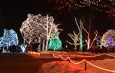 toledo lights at the zoo lights before toledo zoo