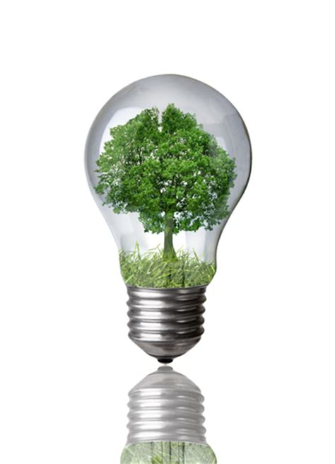 cfl vs incandescent bulbs an overview of an energy