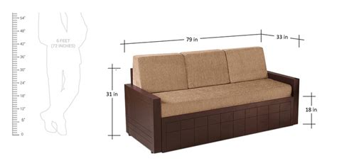 sofa cum bed dimensions buy madelyn sofa cum bed in brown colour by auspicious