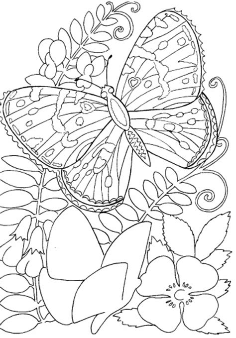 printable coloring pages of butterflies and flowers hard butterflies coloring pages for adults to print