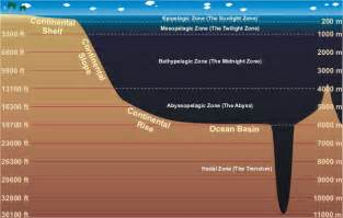 Conceptualize by How Deep Is The Ocean Epic Diving