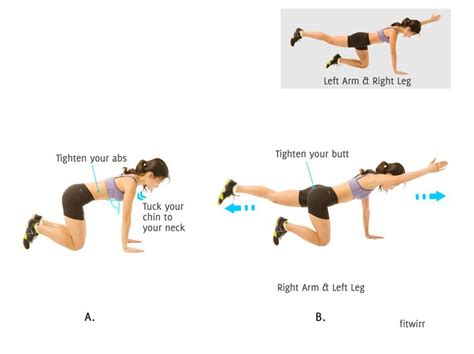 32 best images about multifidus on exercises back and kettlebells
