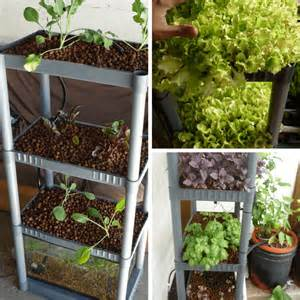 Vaxer Ikea Diy Aquaponics Systems What You Need To Know