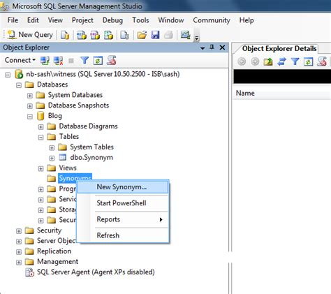 Table Synonym by Sql Server Knowledge Step By Step Guide To